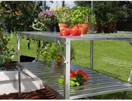 lams Mesa 2 bandejas para Invernadero de jardín: Amazon.es: Jardín