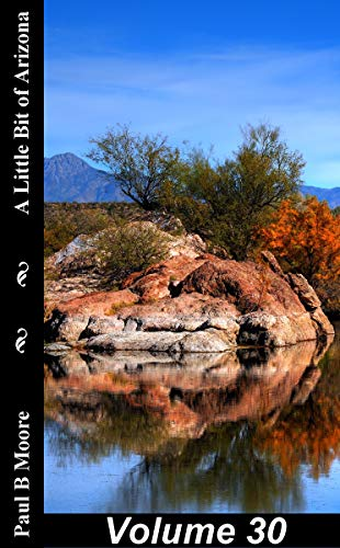 A Little Bit of Arizona: Volume 30 por Paul Moore