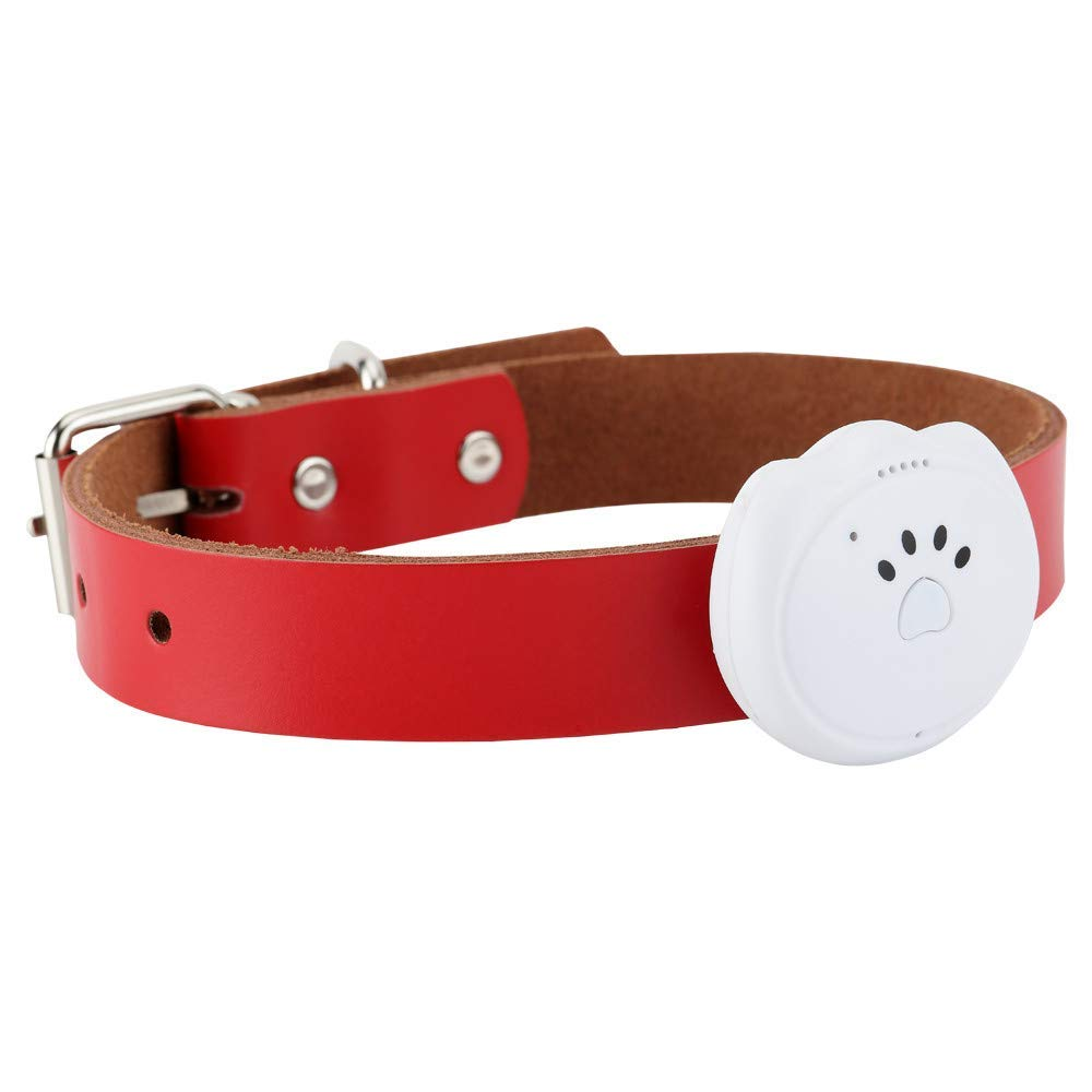 Dreamyth- Tractive 3G Dog GPS Tracker and pet Finder The GPS Dog Collar Attachment for Dog Practical (White)