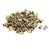 uxcell 1/4'' Female Thread Straight Knurled Rivet Nuts Insert Nutserts Bronze Tone 120pcs
