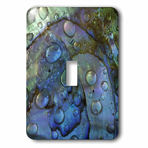3dRose lsp_83306_1 Abalone Shell with Water Drops, Artistic Abstract Na01 Bja0030 Jaynes Gallery Single Toggle - Toggle Abalone