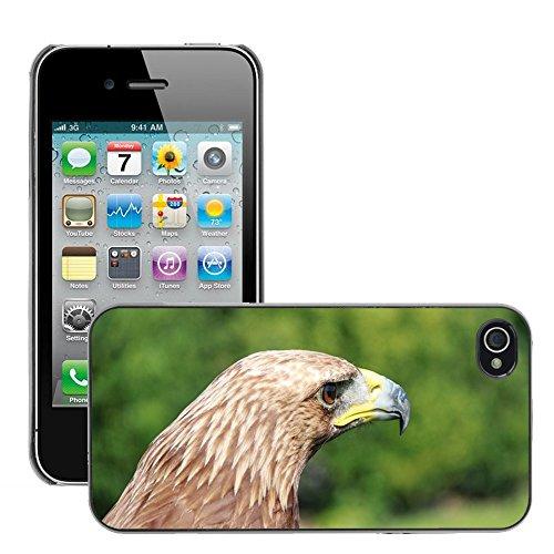 Bild Hart Handy Schwarz Schutz Case Cover Schale Etui // M00135397 Adler Raubvogel Raubvogel Vogel // Apple iPhone 4 4S 4G