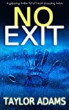 best seller today NO EXIT a gripping thriller full of...