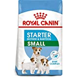 Best Royal Canin Dog Food For Small Dogs - Royal Canin Size Health Nutrition Small Starter Mother Review