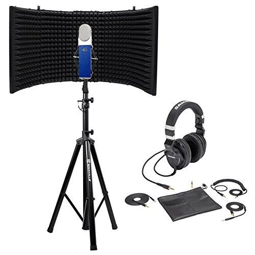 Blue Blueberry Condenser Studio Recording Microphone (Blue Blueberry Microphone Cable)
