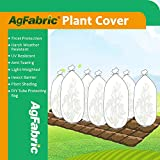 Agfabric Warm Worth Frost Blanket - 1.5 oz Fabric of 6'Diax100' Shrub Jacket, 3D Tube Plant Cover for Frost Protection