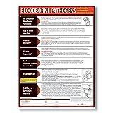 ComplyRight Bloodborne Pathogens Poster