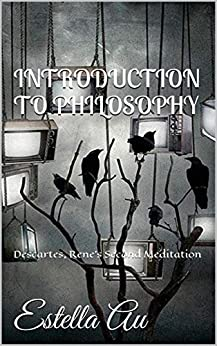 an in depth analysis of descartes second meditation Descartes' first meditation: mathematics and the laws of descartes' first meditation: though in connection with the second meditation.