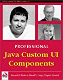 img - for Professional Java Custom UI Components book / textbook / text book