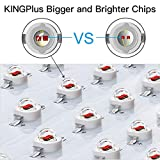 King Plus 1500W Double Chips LED Grow Light Full