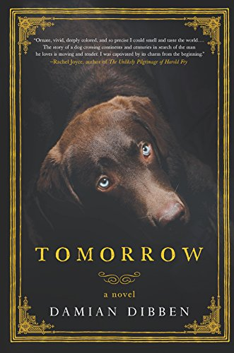 Tomorrow  A Novel