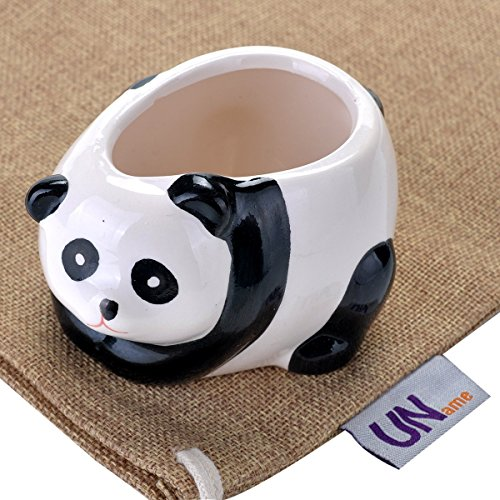 UName Micro Landscape Succulent Plants Creative Flower Planters, Mini Plants Pot, Ceramics Decoration, Handmade, Small Plant Containers, Panda Design….