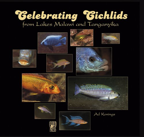 Celebrating Cichlids from Lakes Malawi and Tanganyika ()