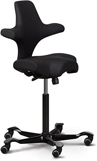 Capisco Ergonomic Office Chair
