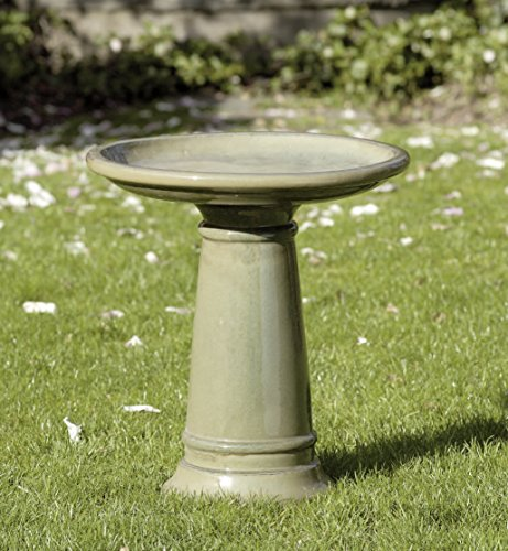 Campania International 6802-2601 Birdbath, Dijon Finish Dijon Finish