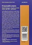 Image de Il responsabile amianto. Metodi di valutazione e di gestione del rischio amianto negli edifici e negli impianti. Con CD-ROM