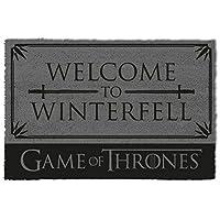 1art1 Game of Thrones Door Mat Floor Mat - Welcome to Winterfell (24 x 16 inches)
