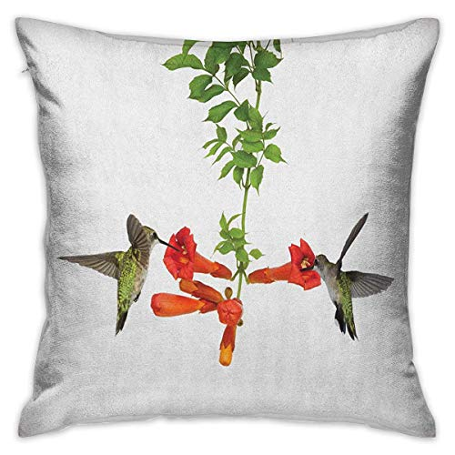 Hummingbirds Square Pillowcase Covers Two Hummingbirds Sipping Nectar from a Trumpet Vine Blossoms Summertime Red Black Green Cushion Cases Pillowcases for Sofa Bedroom Car W17.7 x L17.7