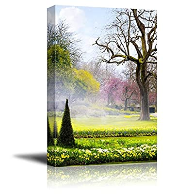 Canvas Prints Wall Art - Beautiful Scenery in a Park in a Summer Morning | Modern Wall Decor/Home Art Stretched Gallery Canvas Wraps Giclee Print & Ready to Hang - 36