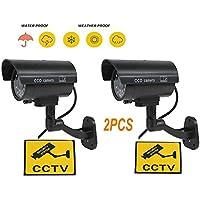 BW Cámara de CCTV ficticia
