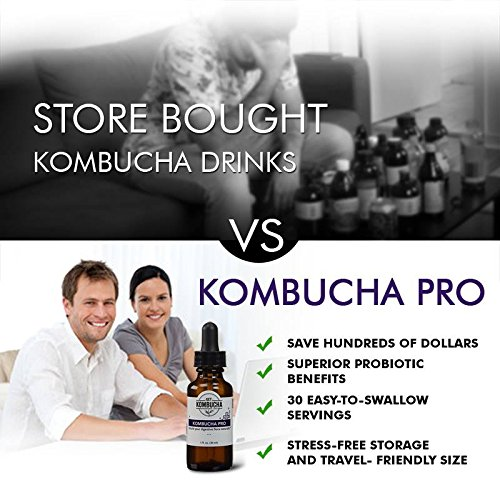 Kombucha Pro - Liquid Probiotics Supplement, Organic Kombucha Extract with Living Probiotics – (1-2 Month Supply) 1oz, Money-back Guarantee