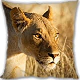 HARLAN lion face danger Custom Zippered Leaning Cushion 35x35cm(14x14inch) Mini Size 300g(0.66lb) (Twin sides Print)