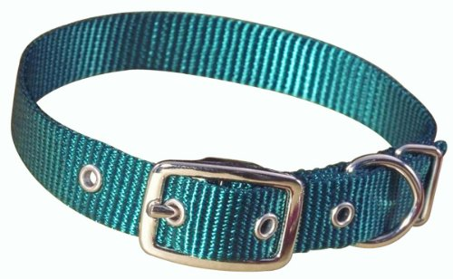 Hamilton 3/4″ Single Thick Nylon Deluxe Dog Collar, 22″, Teal Blue, My Pet Supplies