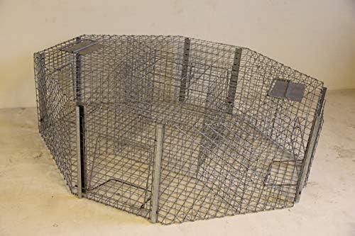 Jaula trampa para capturar palomas y urracas, 5 compartimentos ...