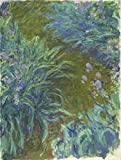 kitchen 67 coupons Oil Painting 'Irises, 1914-1917 By Claude Monet', 20 x 27 inch / 51 x 67 cm , on High Definition HD canvas prints is for Gifts And Game Room, Kitchen And Laundry Room Decoration, coupon