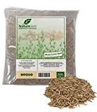 KOSHER Whole Cumin or JEERA Seeds 2 POUNDS -Seeds from Cuminum Cyminum L 32 OUNCES