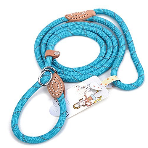 Grand Line Reflective Climbing Rope Slip Lead Pets Leash for Small, Medium, Large and Extra Heavy Dogs and Cats - 5 Ft Long ()