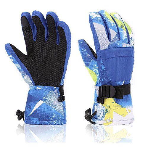 LANYI Winter Ski Gloves Waterproof Snow Proof -40℉ Touchscreen Thermal Insulated Gloves for Men...