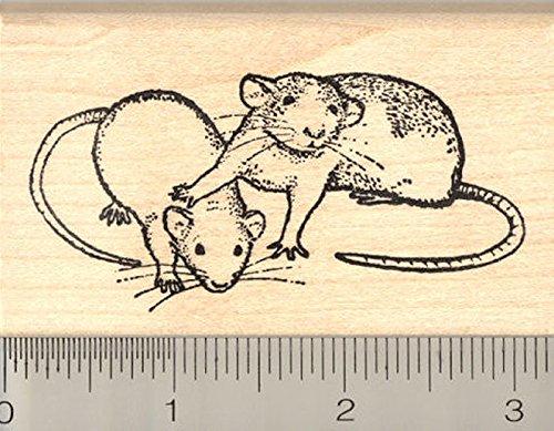 Dumbo Rat Pair Rubber Stamp (Dumbo Rat)