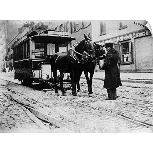 1908 Horse (Canvas on Demand Wall Peel Wall Art Print Entitled A Horse-Drawn Chambers Street Ferry Streetcar in Downtown Manhattan, 1908 36
