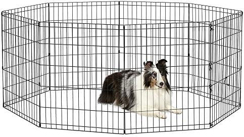New World Pet Products B552 30