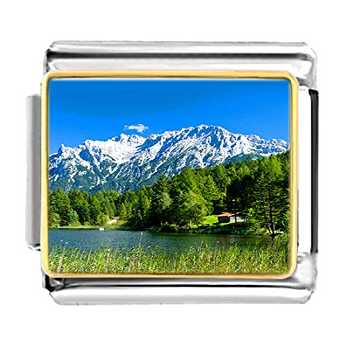 GiftJewelryShop Gold Plated Larch Tree German Alps Bracelet Link Photo Italian Charm