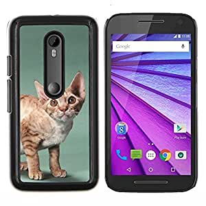 EJOOY---Cubierta de la caja de protección para la piel dura ** Motorola MOTO G3 / Moto G (3nd Generation) ** --Javanesa Devon Rex grandes orejas del gato