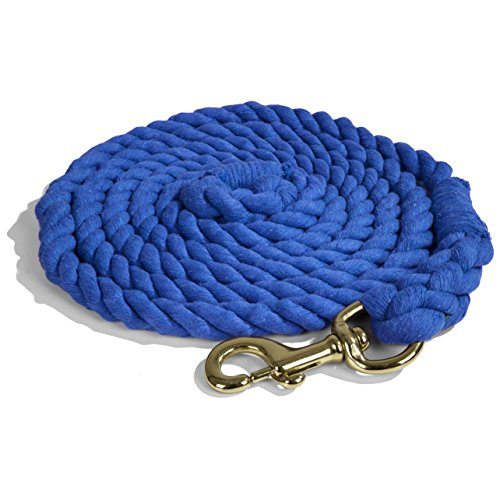 Intrepid International Heavy Duty Cotton 10 Foot Lead Rope with Brass Snap, Royal Blue