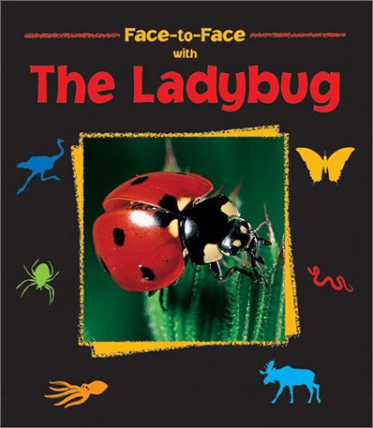 (Face-to-Face with the Ladybug)