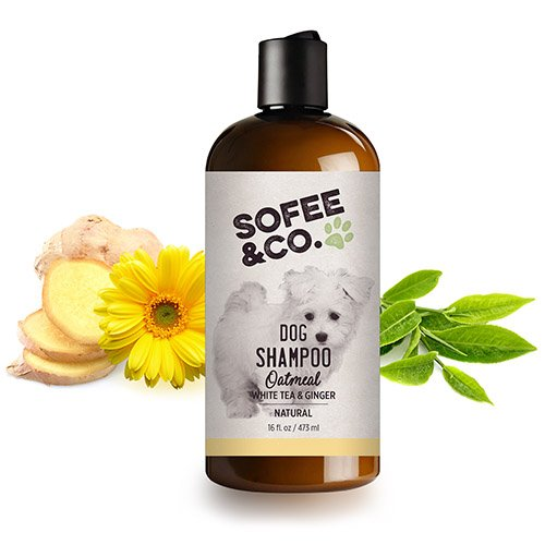 Sofee & Co. Natural Oatmeal Dog/Puppy Shampoo, White Tea and Ginger - Clean, Moisturize, Soothe, Soften Normal Dry Itchy Allergy Sensitive Skin. Deodorize & Freshen. 16oz (Best Shampoo For Maltipoo)