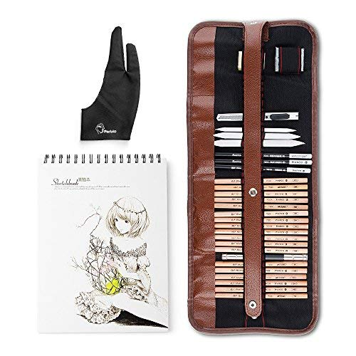 29 Pieces Professional Sketch & Drawing Art Tool Kit with Graphite Pencils, Charcoal Pencils, Paper Erasable Pen, Craft Knife-Lightwish (with Sketchbook, Canvas Rolling Pouch) from Lightwish