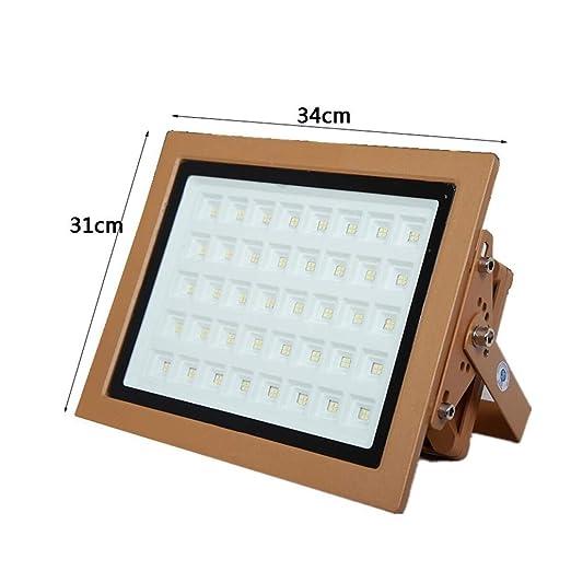 Q-fo Foco Proyector LED Exteriores, Estación De Servicio De ...