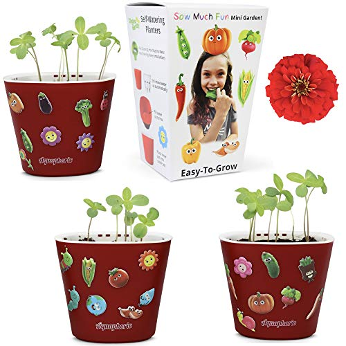 Window Garden Sow Much Fun Seed Starting, Flower Planting and Growing Kit for Kids, 3 Self Watering Planters, Soil, Seeds and Puffy Stickers. No Mess, Easy, Works Great! (Zinnia) (Childrens Seed Kit)