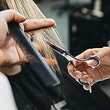Hair Cutting Scissors Shears Professional Barber