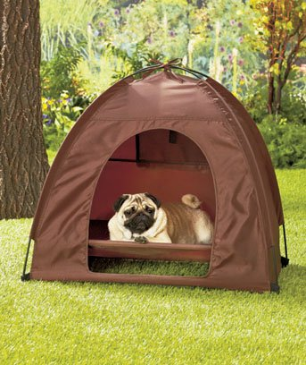Dog Camping Gear Set with Pet Tent and Outdoor Bed