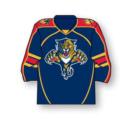 Florida Panthers Jersey Pin from aminco