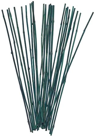 Amazoncom Bond 225 25 Pack 2 Feet Bamboo Stakes Garden Stakes