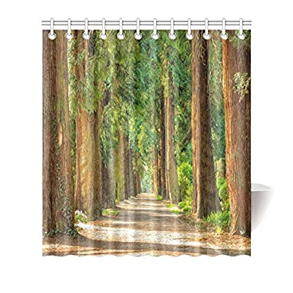 Customized Forest Shower Curtain Beautiful Fresh Green Fabric 66WX72