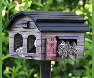 Wildlife Garden Pajarera con comedero