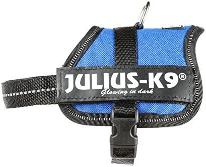 Julius-K9 Baby 2, 33-45 cm, Azul: Amazon.es: Productos para mascotas